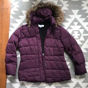 Plum Calvin Klein Coat